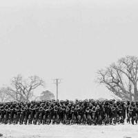 sadf troops