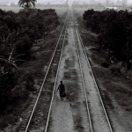 from Rovuma to Maputo, 2005, hand printed fiber base silver gelatin print, edition of 10